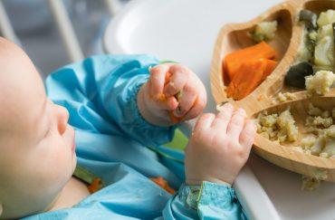 How Organic Food Help Babies Well-Being?