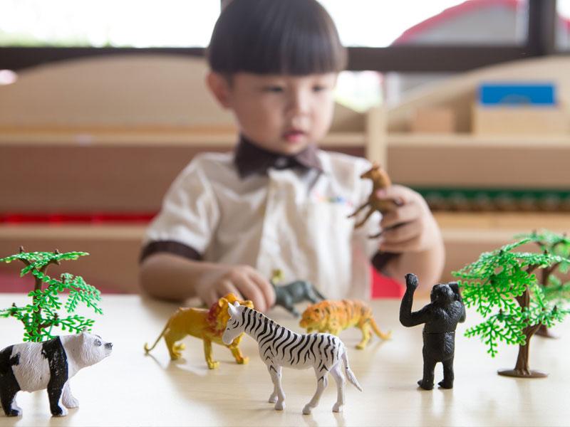 Montessori Program Malaysia