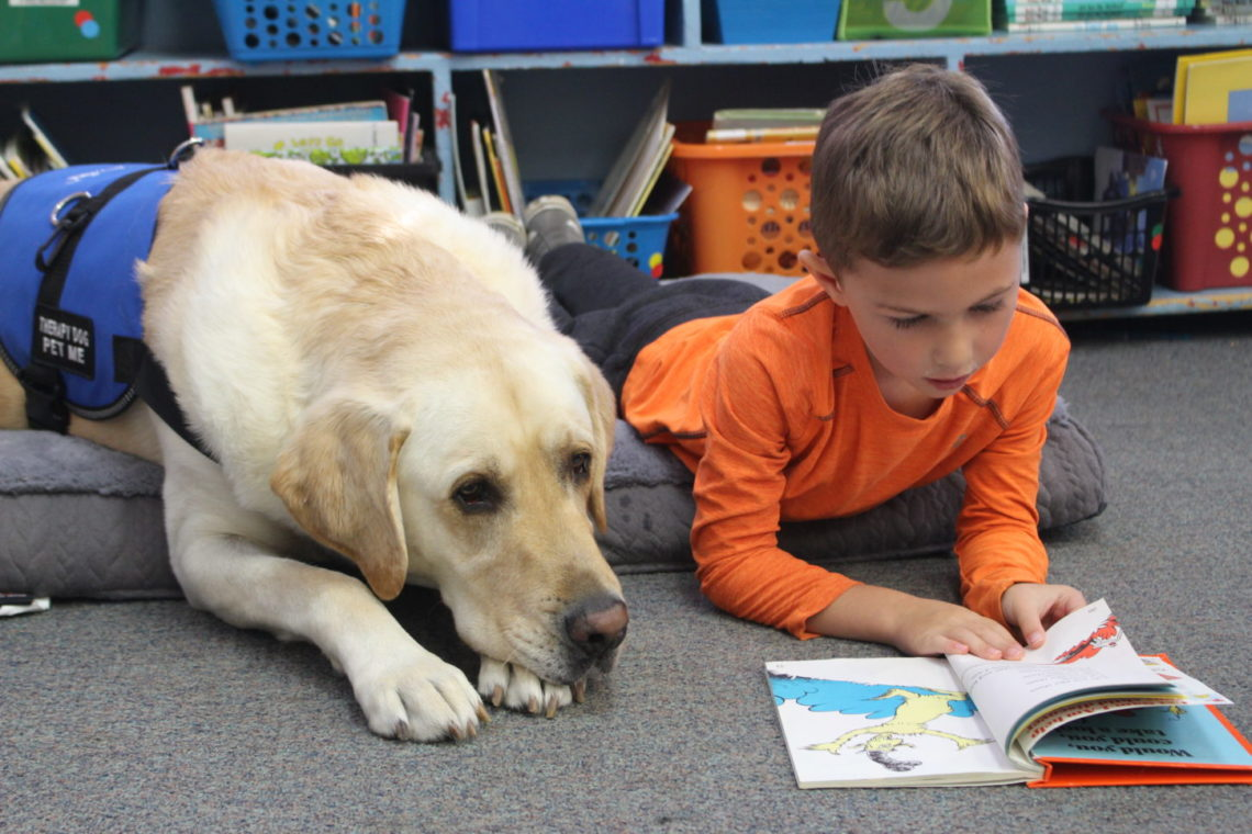 Children reading to a dog