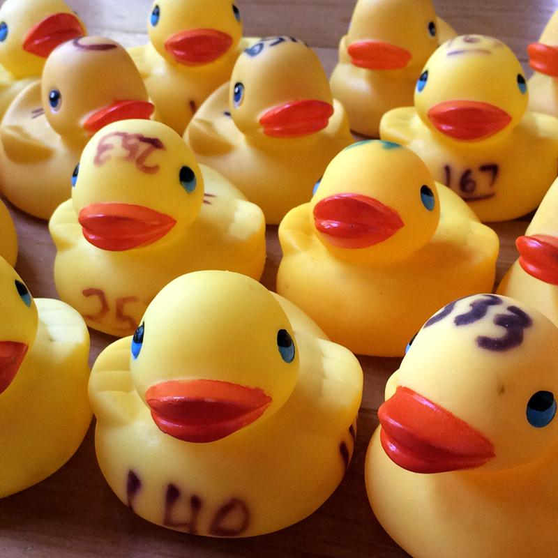 rubber-ducks-toys