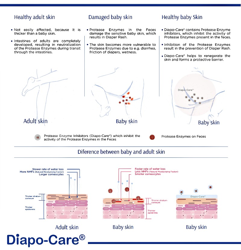 Because Diapo-Care contains Protease Enzyme Inhibitors, applying Diapo-Care after each diaper change will prevent diaper rash from occurring. If the rashes are already present, Diapo-Care will also heal the skin even in severe cases.