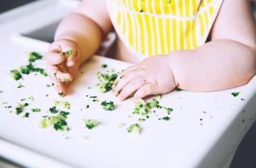baby led weaning time