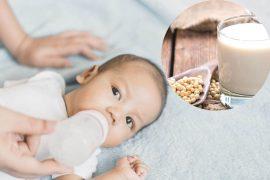 Susu Soya Untuk Bayi