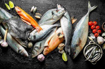 jenis ikan di malaysia